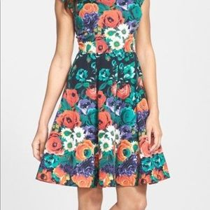 NWT! Felicity & Coco Fit and Flare Floral Dress